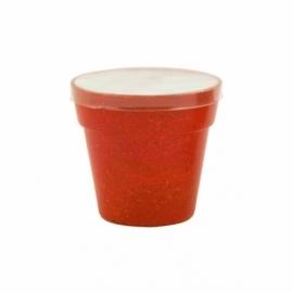 Petunia - czerwony