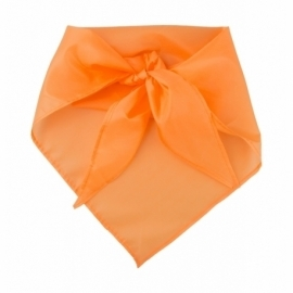 Plus - pomarańcz