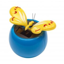 Motyl solarny, BRIMSTONE, niebieski/żółty